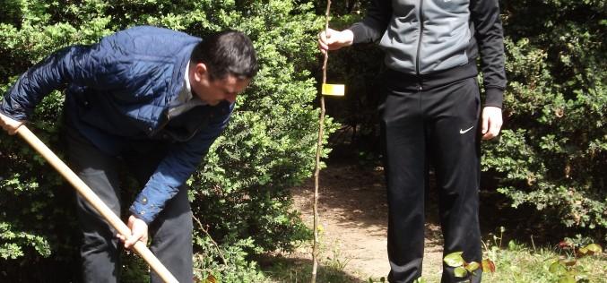 Nyolcszáz almafát ültetnek az aradi iskolások