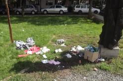 Borzalmas látvány Arad központjában [VIDEÓ]