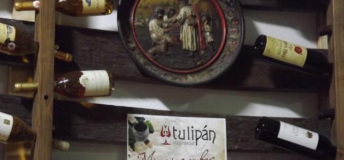 Villányi borkóstoló a Tulipánban