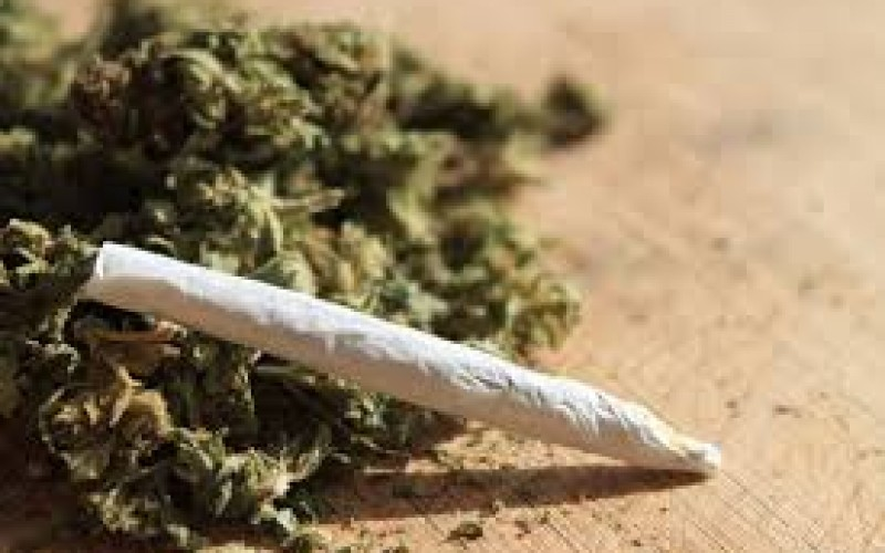 Négy drogdílert fogtak el