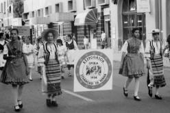 Susánszki betegség miatt nem jön az aradi ünnepségre