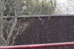 Megjött az első hó