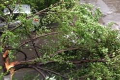 Viharmérleg: 48 település áram nélkül