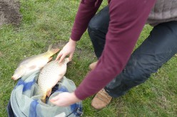 Szezonnyitó horgásznap Nagyiratoson