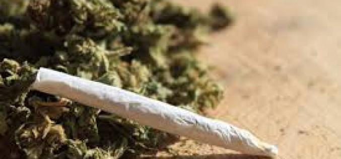 Maros-parti barakkban tárolta a drogot