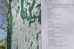 Kiragasztott versek Aradon a Magyar Költészet Napján