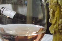 Felvidéki borok a Tulipánban