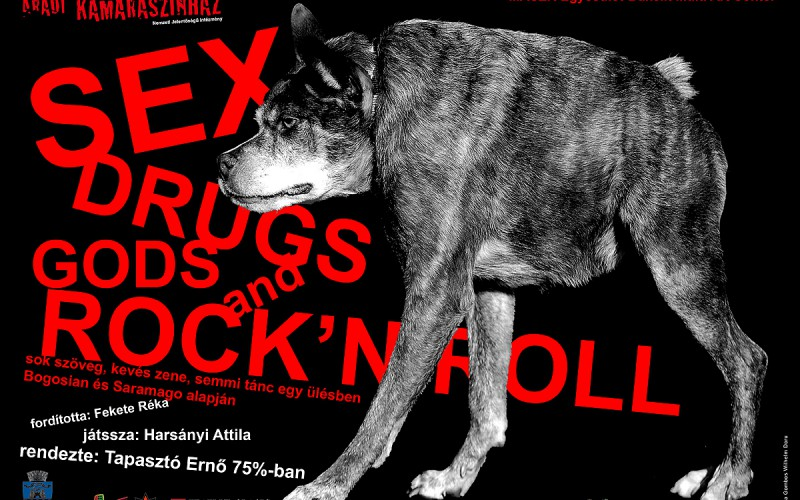 A Sex, drugs, gods & rock 'n' roll a VIDOR Fesztiválon