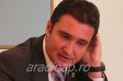 Felkapaszkodott a fára: aradi ex-prefektus óvja erdeinket