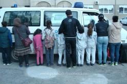 Húsz migránst fogtak el Pereg és Pécska határában