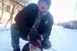 Védtelen állatot kínzott pitbulljával: még dicsekedett is