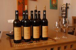 Elite Wine-kóstoló a Tulipánban