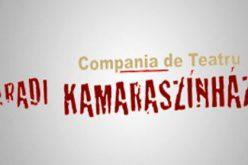 Bérletárusítás az Aradi Kamaraszínház 2017-es évadára
