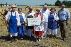 Tornya-Pécska búzát és díjakat aratott Szarvason