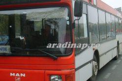 Hétvégi buszjárat a Csálai Erdőbe