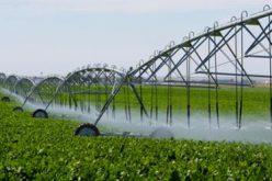 Dragneának nem tetszik, hogy magyar gazdák aradi vízzel öntöznek