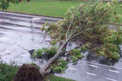 Komoly károkat okozott a délutáni vihar