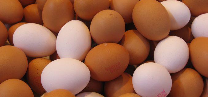 Miért majd' egy lej a tojás?
