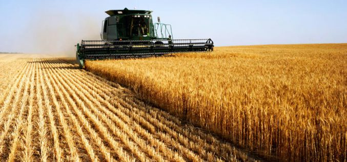 Dübörög a földpiac: átlagárban Arad országos második