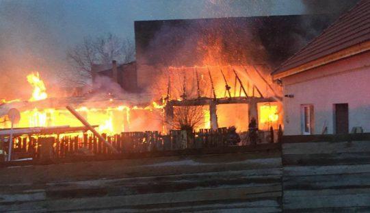 Leégett Pécskán a Kamarad