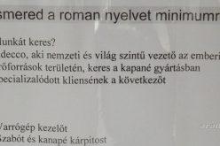 """Álláskínálat: beszélni kicsit """"gugli-magyar"""""""