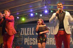Pécska Város Napjai, a multikulturalitás jegyében