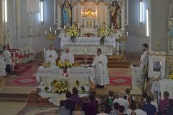 Templombúcsú Pécskán