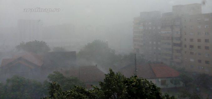 Elárasztott utcák, kidöntött fák a vasárnap déli viharban