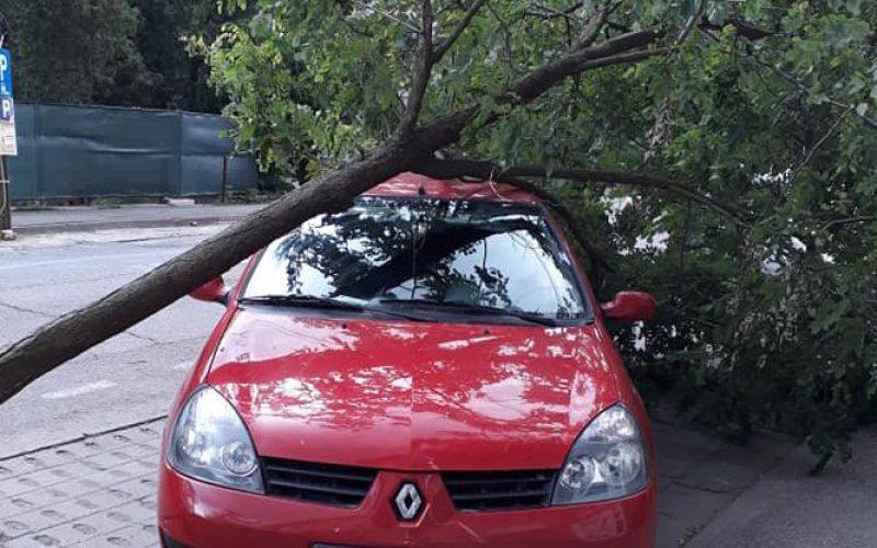 Délutáni vihar: letépett tetők, kicsavart fák