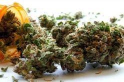 Újabb aradi drogdílerek buktak le