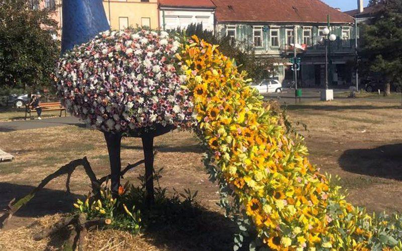 Őszi Virágok Fesztiválja