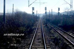 Soborsinnál kisiklott a Brassó-Budapest intercity