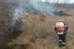Házakat veszélyeztető tűz Borossebesben