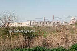 Miért akarnak zsúfolt börtönbe költözni a fogvatartottak az Aradi Fegyházból?