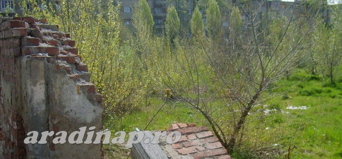 Bibarţ bekeményített: park lesz az egykori Vörös Trikó helyén és nem lakótömb