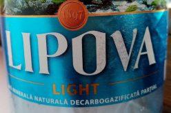Szeszes cég veszi meg a lippai ásványvíztöltőt