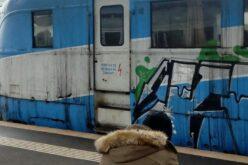Újabb vonatjáratokat állítanak vissza