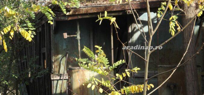 Máshol kiállítják, Aradon az enyészet pusztítja a régi villamosokat