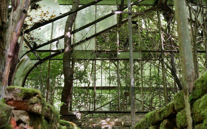 Károly herceg támogatja a bulcsi kastély üvegházának megmentését
