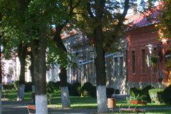 Szúnyogirtás Pécskán