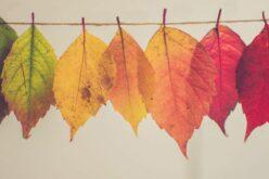 Marad a csapadékmentes, kellemes őszi idő