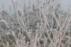 Hétvégén érkezik a tél
