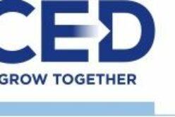 Online oktatási platformot indít a CED