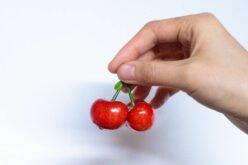 Red Happy Fruit Lippa: mertek szövetkezni