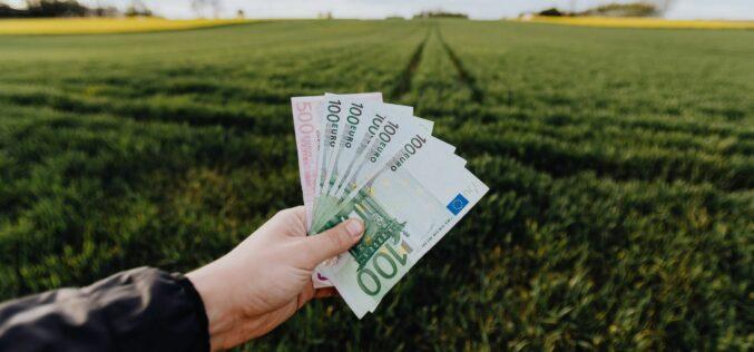 Arad megyében cserélt gazdát a legtöbb termőföld