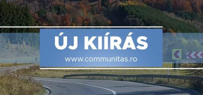Új pályázati kiírások a Communitasnál