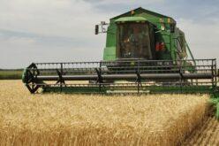 A külföldiek előszerettel vásárolnak termőföldet Arad megyében