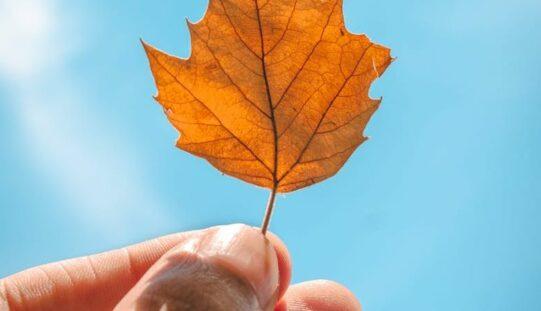 Hétvégén visszatér az őszi meleg