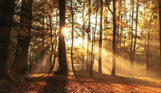 Szerdán beköszönt a csillagászati ősz
