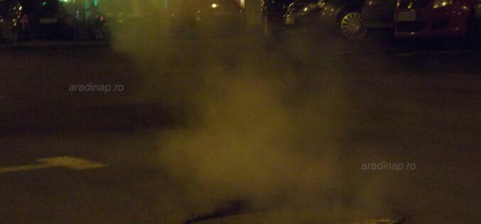 Polgi a távfűtés döglött macskáját a kormány udvarába hajította